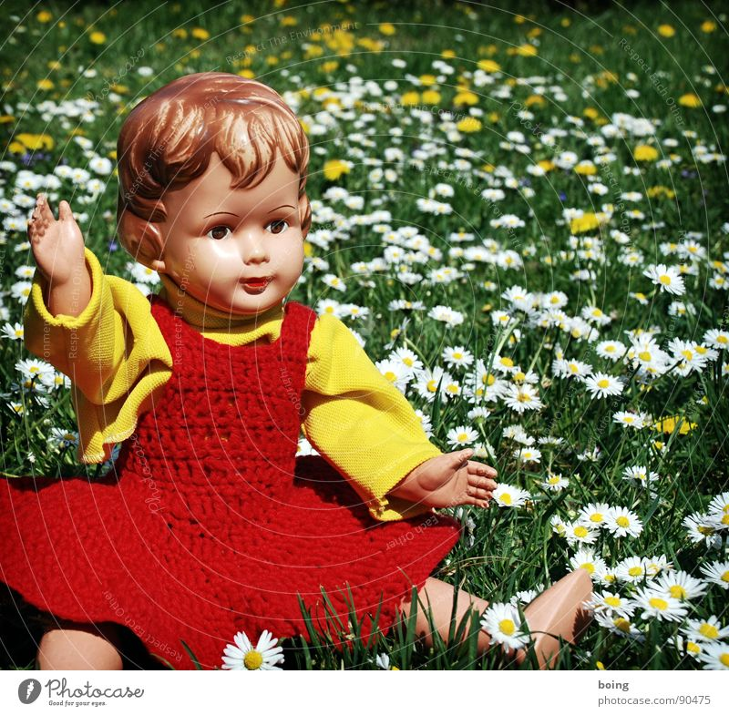 Loneliness Meadow Spring Dress Toys Blossoming Dandelion Doll Goodbye Daisy Picnic Flower meadow Wave Salutation Clue Hello