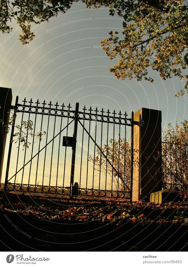 Sky Calm Autumn Death Sadness Moody Religion and faith Grief Peace End Transience Infinity Gate Distress Retirement Pole