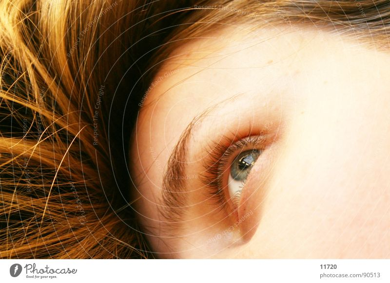 Woman Eyes Dream Lie Observe Concentrate Fatigue Testing & Control Expectation Bedroom Alert Daydreamer