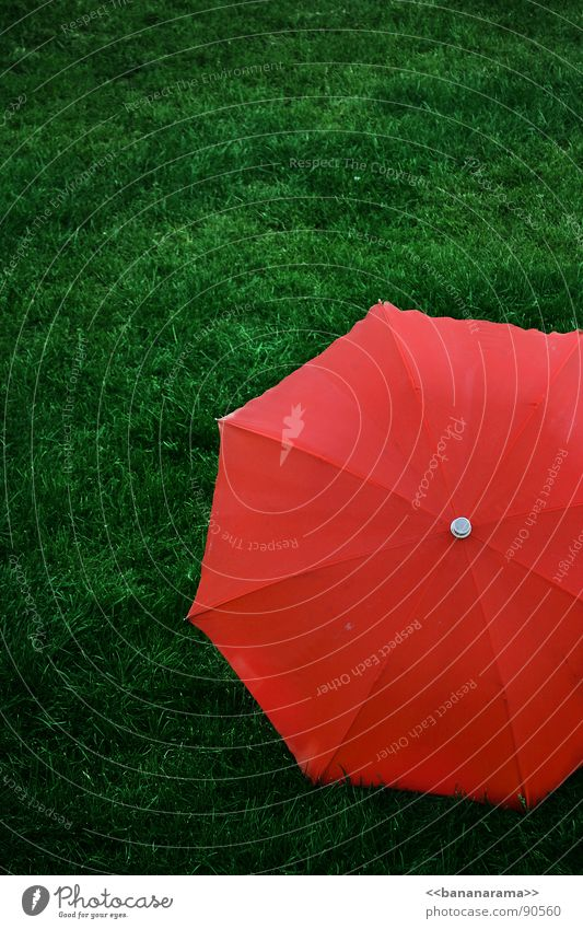 Red Umbrella Green Meadow Grass Reddish green Lawn Protection Simple