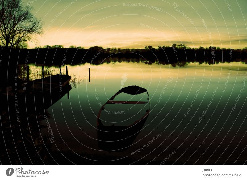 submersible Dusk Remote Fishing (Angle) Tree Contemplative Watercraft Loneliness Relaxation Dark Fishing boat Calm Horizon Think Rowboat To be silent Lake