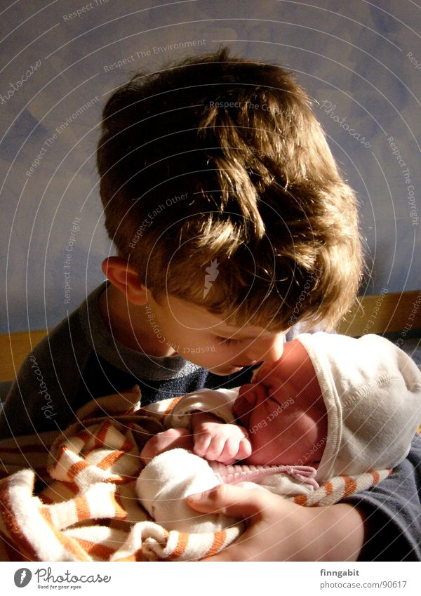 Big Brother Baby Small Scream Sister To console Grief Kissing Caresses Toddler Boy (child) 7 years Sadness Cry