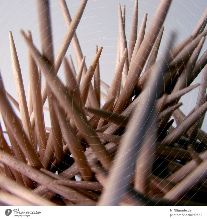 prickly & SPITZ Toothpick Impaled Wood Wood varnish Beige Yellow Thorny Cleaning Dental care Muddled Vertical Funny Chopstick Mikado Defensive Kitchen Fear