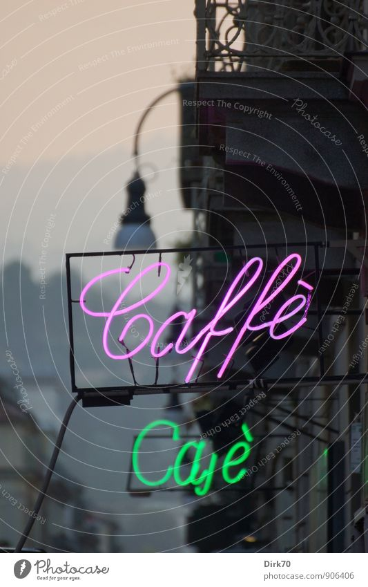 More Italian Delights Food To have a coffee Coffee Latte macchiato Espresso Lifestyle Gastronomy Sunrise Sunset Summer Autumn Beautiful weather Turin Italy Town
