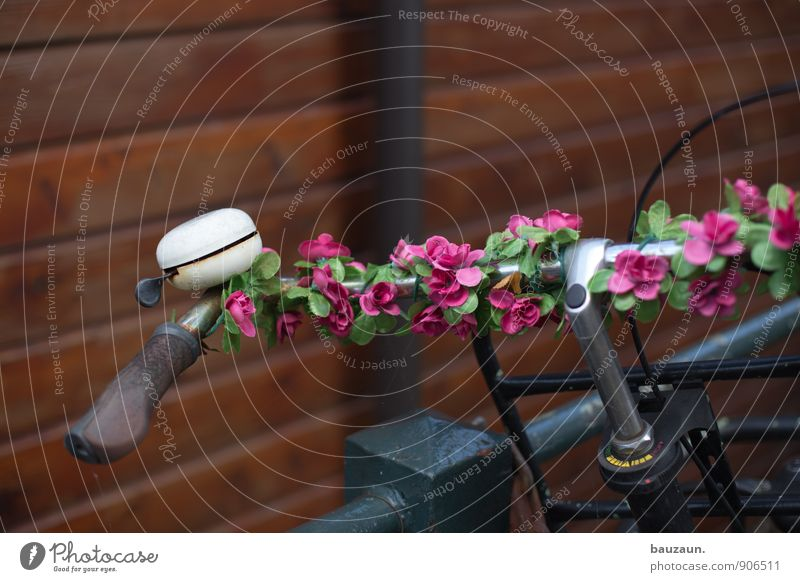 Beautiful Flower Style Metal Pink Lifestyle Transport Bicycle Trip Joie de vivre (Vitality) Cycling Kitsch Plastic Passion Downtown Exotic