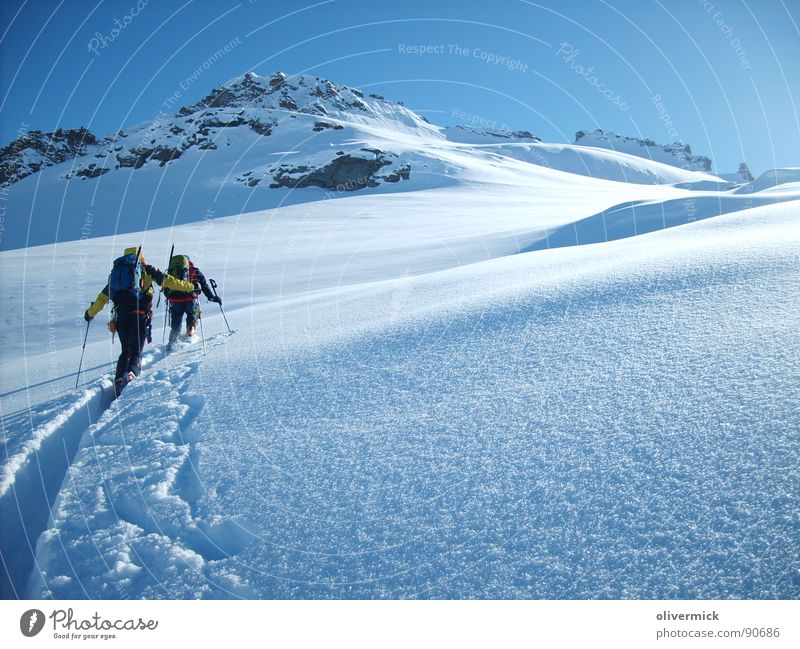 way to the gran paradiso Ski tour Moody Mountaineering Gran Paradiso Peak White Winter Winter mood Snow crystal Sports Playing