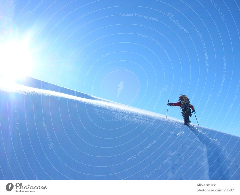 Struggle and happiness Gran Paradiso Back-light Snow track Ski tour Mountaineering Winter Winter mood Sports Playing Sun Contrast Winter sports