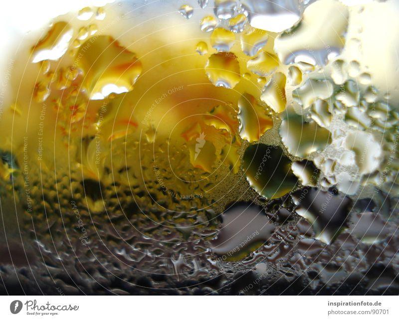 Water Green Blue Black Yellow Glass Drops of water Window pane Steam Pane Precipitation
