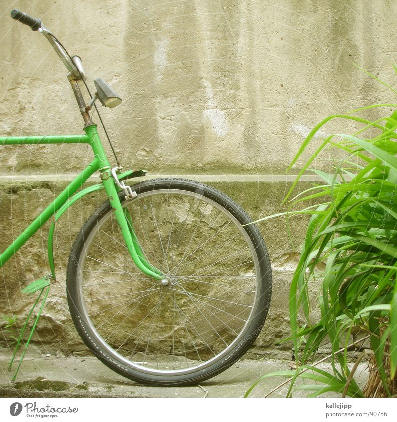 parking space II Bicycle Vintage car Wheel Rubber Pillar Wall (barrier) Rear light Backyard Fender Wheel rim Spokes Chrome Green Grass Hose Coat Lamp Derelict