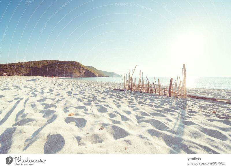 beach Landscape Sand Water Summer Beautiful weather Beach Discover Relaxation Dream Warmth Vacation & Travel Corsica Travel photography Mediterranean sea