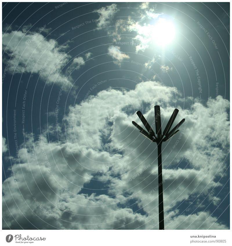 Sky Blue White Sun Clouds Blossom Lighting Lantern Street lighting Traffic infrastructure