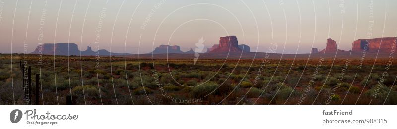 The beautiful West Nature Landscape Plant Earth Summer Beautiful weather Foliage plant Desert Esthetic Hot Cowardice Mountain Monument Valley Badlands Flower