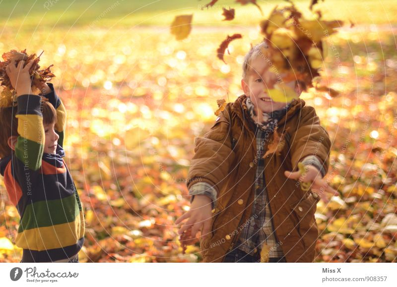 Human being Child Leaf Joy Autumn Emotions Boy (child) Playing Laughter Garden Moody Friendship Family & Relations Leisure and hobbies Infancy Happiness