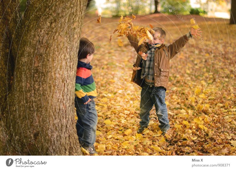Human being Child Tree Leaf Joy Forest Autumn Emotions Boy (child) Playing Moody Friendship Park Leisure and hobbies Infancy Happiness