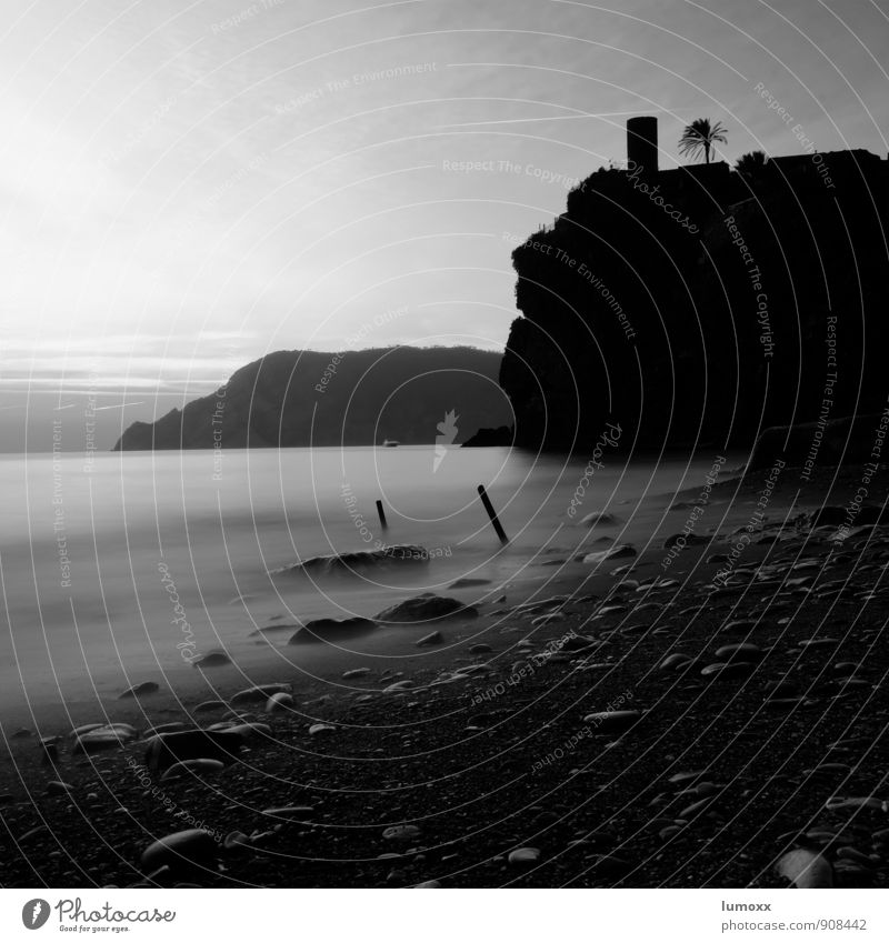 castello Nature Water Sunrise Sunset Summer Palm tree Coast Beach Silver Rock Vernazza Cinque Terre Italy Black & white photo Twilight Silhouette Long exposure