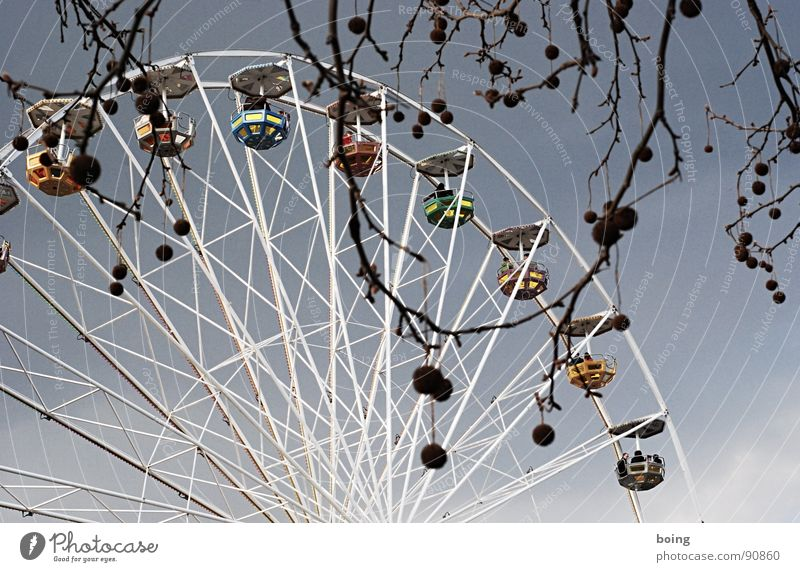 Joy Umbrella Wheel Sunshade Fairs & Carnivals Trade fair Umbrellas & Shades Exhibition Ferris wheel Vertigo Amusement Park Theme-park rides American Sycamore