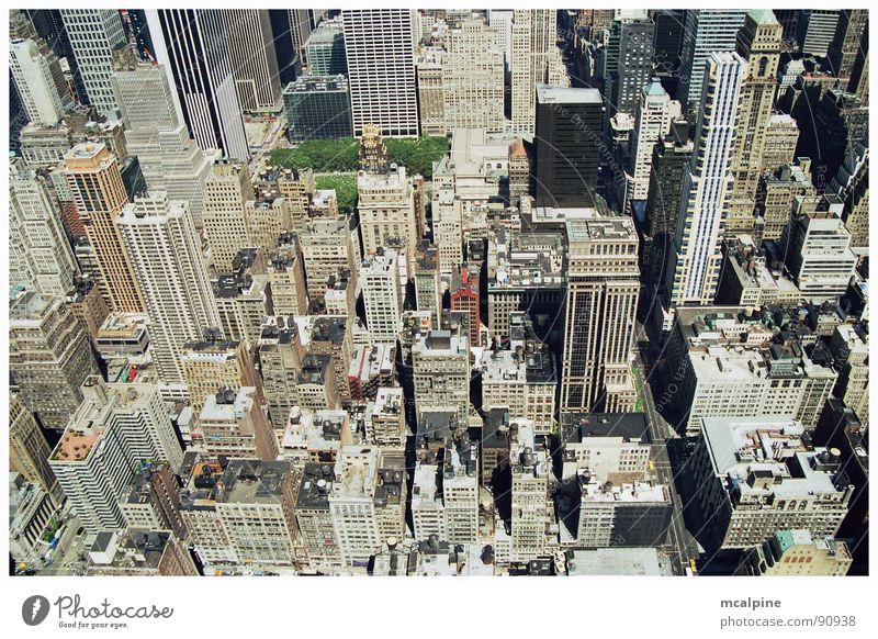 Green City Window Gray Park Building Architecture Flat (apartment) Concrete High-rise Tall USA Vantage point Roof Tower Americas