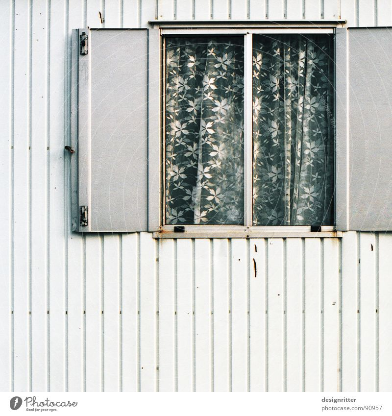 Flowery Site trailer Window Gray Shutter Curtain Tin Gloomy Rust Detail contractor's shed grey flowers plate blank sheet rusty monosonic monotonous