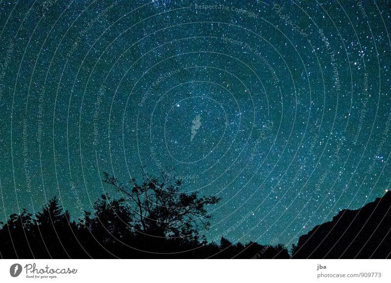 Sky Nature Summer Calm Dark Forest Mountain Autumn Freedom Illuminate Beautiful weather Stars Treetop Harmonious Night sky Starry sky