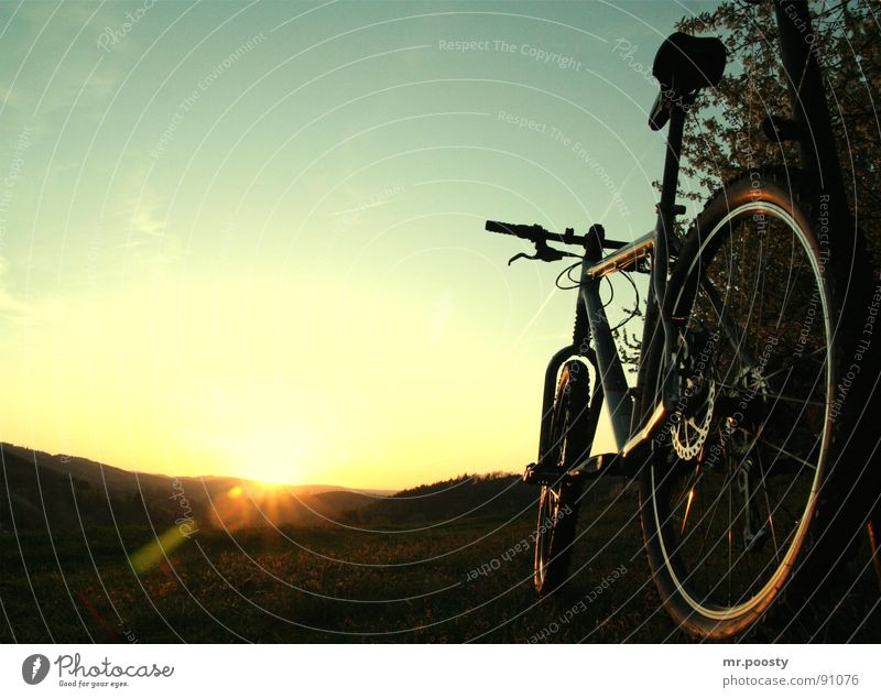 Nature Vacation & Travel Summer Sun Loneliness Landscape Warmth Grass Jump Bicycle Leisure and hobbies Dirty Large Trip Technology Romance