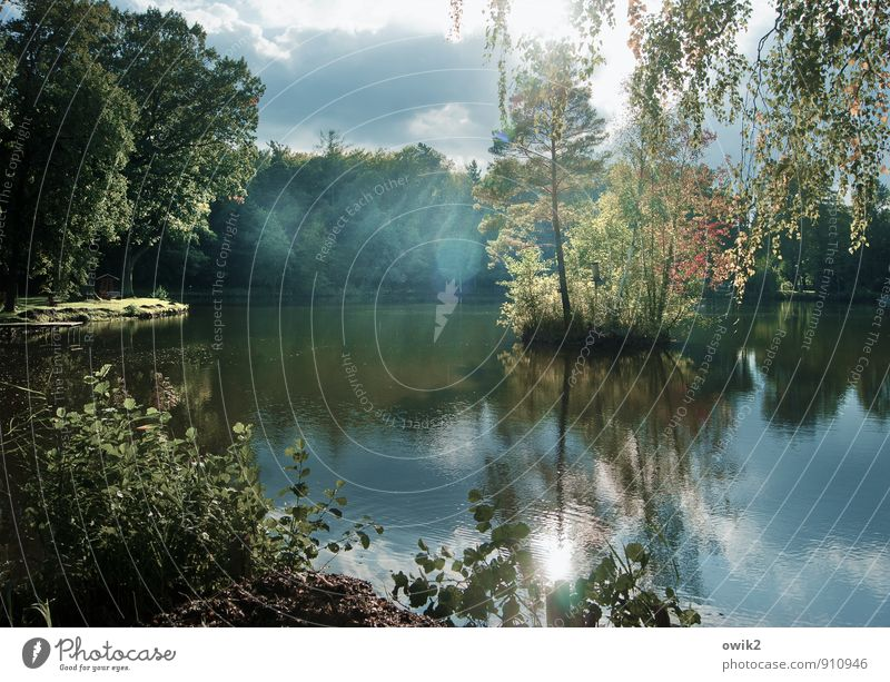 insularity Environment Nature Landscape Plant Water Sky Clouds Sunlight Beautiful weather Tree Bushes Leaf Wild plant Forest Lakeside Island Pond Breathe