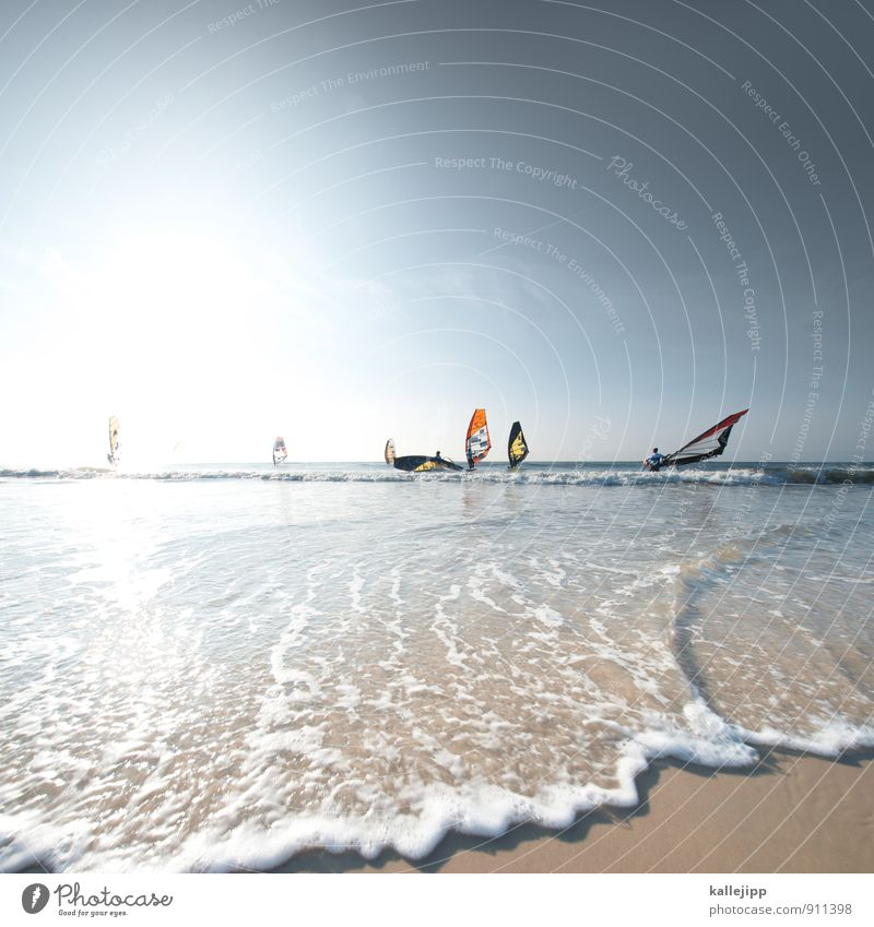 I want to go back to westerland. Sports Fitness Sports Training Aquatics Sportsperson Sporting event Group Driving Surfing Sylt Slalom Sail Windsurfing Horizon