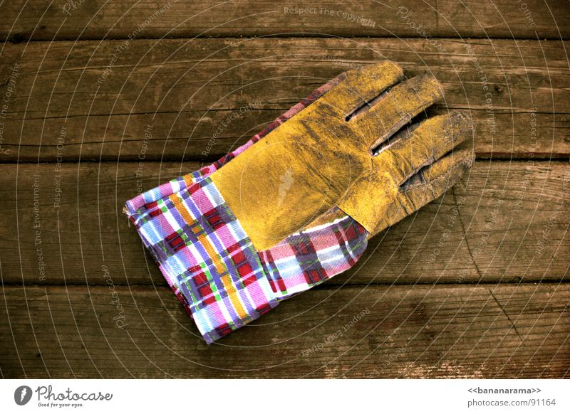 Hand Work and employment Garden Wood Table Industrial Photography Construction site Protection Touch Craft (trade) Tool Gloves Gardener