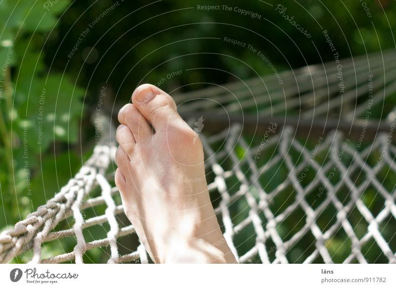 hang out Wellness Well-being Contentment Relaxation Summer Summer vacation Sun Sunbathing Man Adults Life Feet 1 Human being Environment Nature