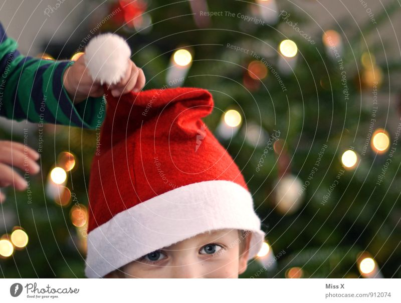 Human being Child Christmas & Advent Hand Joy Boy (child) Playing Laughter Head Friendship Family & Relations Infancy Happiness Cap Christmas tree Toddler