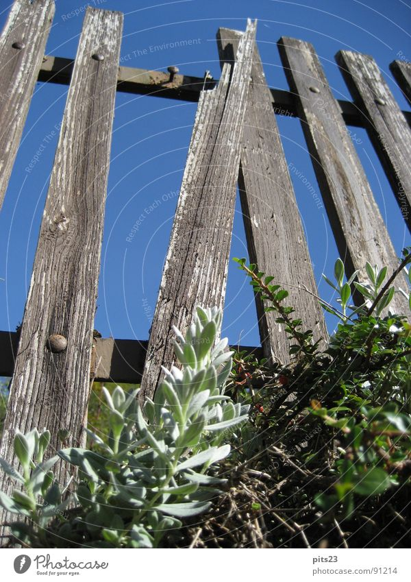 Meadow Garden Wood Park Metal Border Fence Wooden board Varnish Real estate