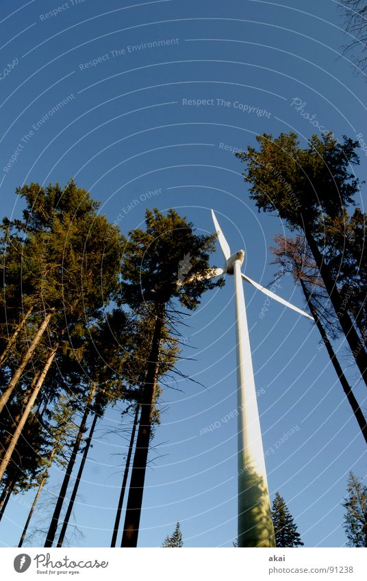 Wind power at Roßkopf 4 Sky Coniferous trees Forest Sky blue Geometry Deciduous tree Perspective Coniferous forest Glade Paradise Clearing Wind energy plant