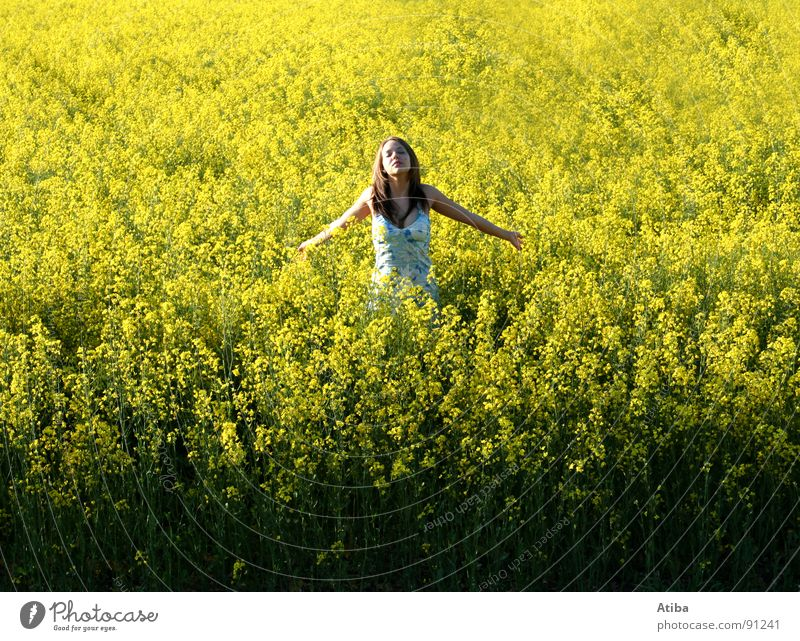 sun worshippers Canola Yellow Field Agriculture Feminine Dress Prayer Summer Spring Oil To enjoy Colour
