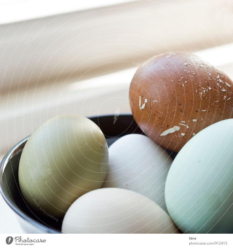 Food Beginning Round Protection Safety Organic produce Egg Bowl Organic farming Sheath Selection Eggshell