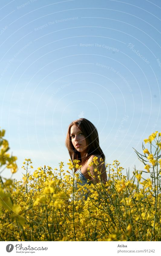 the girl from the rape Canola Field Yellow Agriculture Woman Feminine Dress Clouds Portrait photograph Summer Sky Beautiful weather Colour Looking