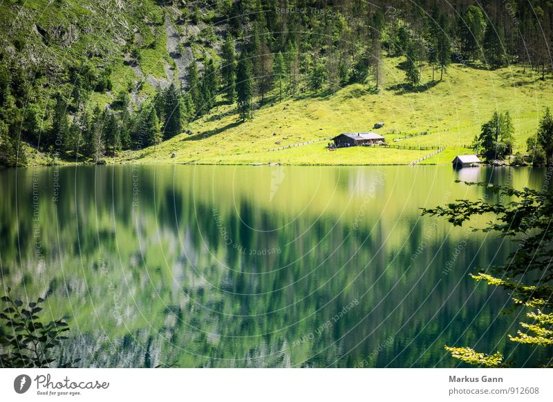 Upper Lake Vacation & Travel Summer Nature Landscape Lakeside Green Moody Calm Berchtesgaden Lake Obersee Germany Europe Lake Königssee Bavaria Forest Hut