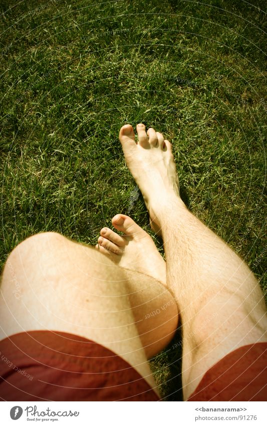 Red Summer Joy Grass Spring Legs Feet Swimming pool Lawn Swimming trunks Spring fever Enchanting Sporting grounds