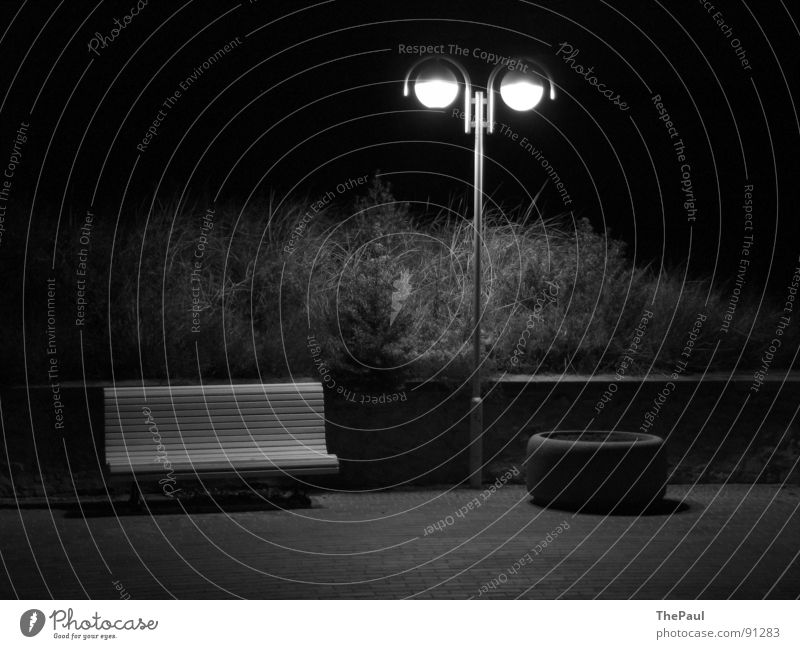Shining Stars Lantern Street lighting Bushes Night Dark Grief Loneliness Contentment Long exposure Exterior shot Black & white photo Garden Park Bench Sadness