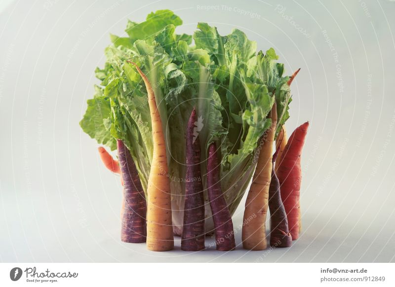 vegetables Food Vegetable Lettuce Salad Nutrition Organic produce Vegetarian diet Diet To enjoy Good Yellow Healthy Carrot Classification Colour photo