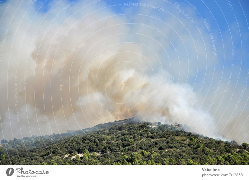 Forest fire on Mallorca Mountain Environment Nature Landscape Elements Fire Sky Warmth Drought Peak Smoke Threat Blue Brown Green Fear Dangerous Disaster