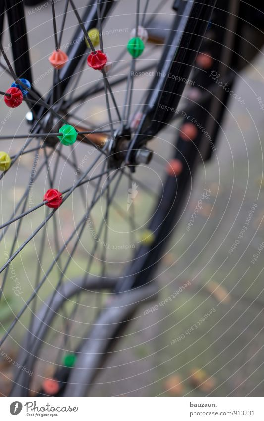 Together. Leisure and hobbies Cycling Bicycle Town Transport Street Lanes & trails Bicycle rack Bicycle tyre Spokes Metal Plastic Sphere Line Driving Stand