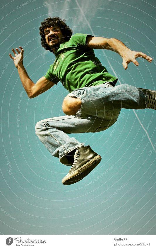 Cat Sky Summer Joy Emotions Freedom Jump Think Air Wild animal Flying Tall Dangerous Dynamics Steep Funsport