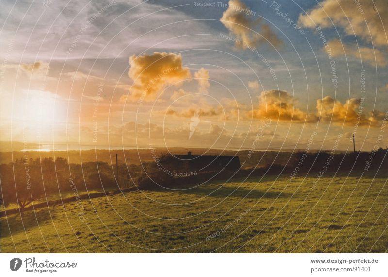 Irish fairy tale mood Dusk Fairy tale Sunset Meadow Clouds Weather Ireland Pasture Sky
