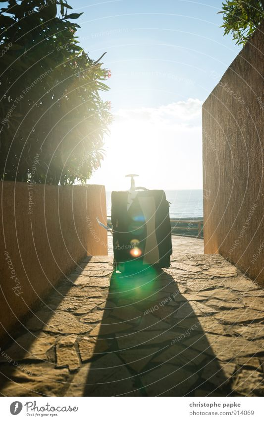 The journey continues Vacation & Travel Tourism Trip Summer Summer vacation Sun Ocean Warmth Wanderlust Relaxation Suitcase trolley hand luggage Tile Lens flare