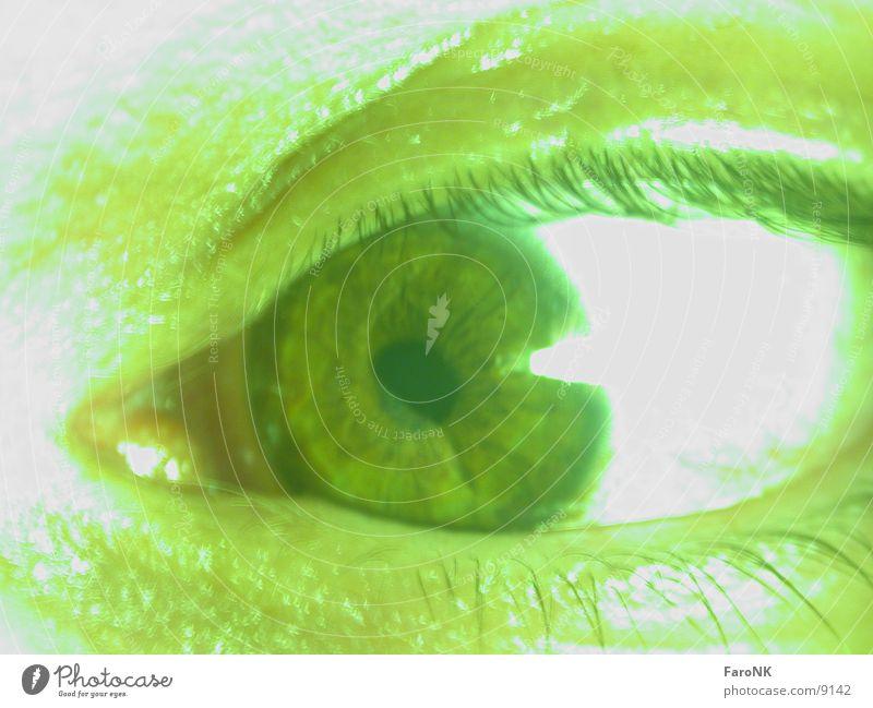 Green Eyes Eyelash Iris