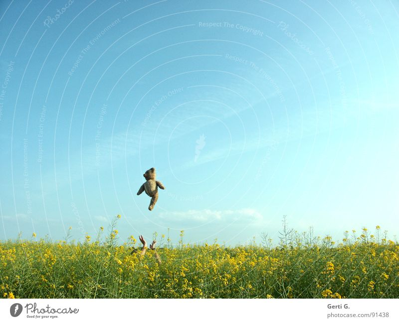 Sky Hand Blue Joy Clouds Yellow Sports Playing Jump Happy Landscape Brown Funny Arm Flying Tall