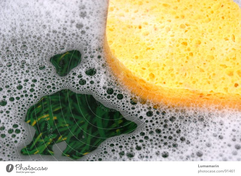 Water Green Joy Yellow Playing Grass Happiness Beautiful weather Kitchen Friendliness Float in the water Bubble Positive Surface of water Foam Household