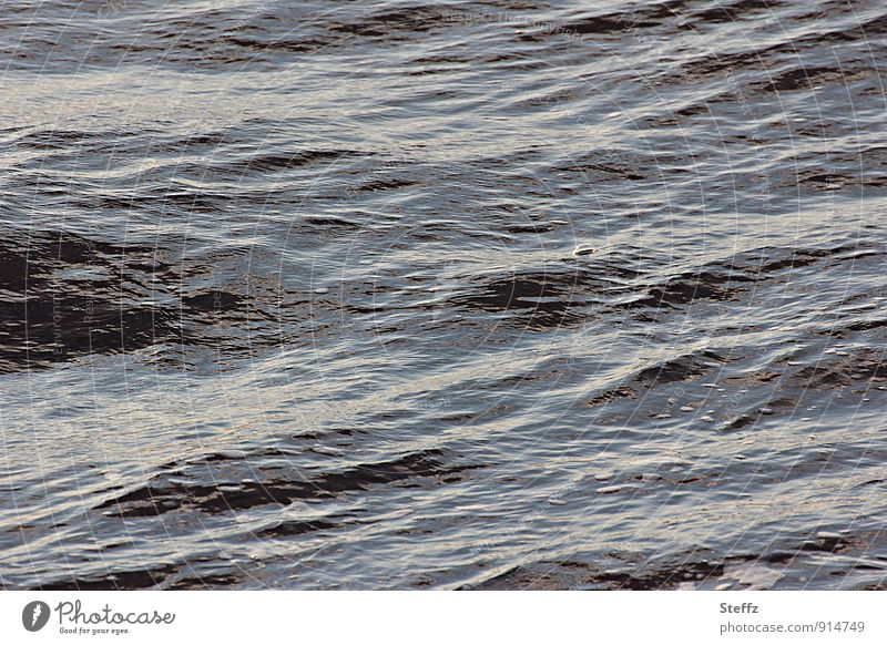 bubbly in the North Sea blubb blubbs Bubble Nordic Nordic romanticism soft waves Ocean Sea water calm water Air bubble Maritime Small waves