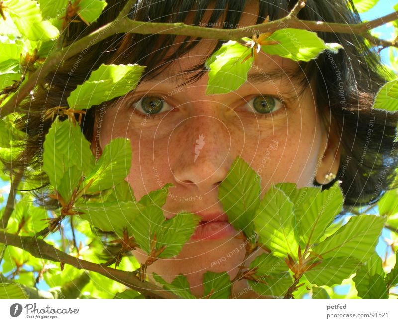 Green Face Calm Leaf Eyes Emotions Spring Branch Human being Hiding place