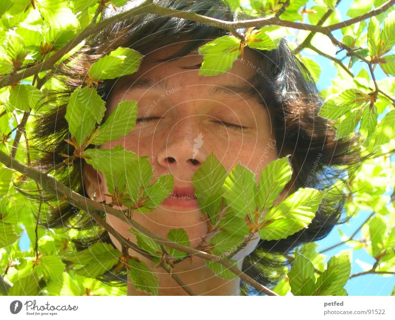 Green Face Calm Leaf Eyes Emotions Spring Dream Branch