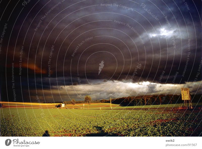 In se great plains of Saxony Colour photo Subdued colour Exterior shot Deserted Copy Space top Day Twilight Light Shadow Sunlight Panorama (View) Far-off places